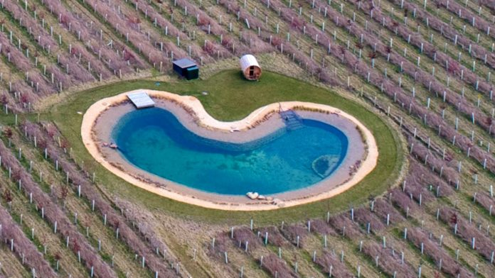 Ed Sheeran Angered His Neighbors Over The Wildlife Pond He Built