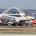 American Airlines Accidentally Flew Passenger's Dog To Wrong City