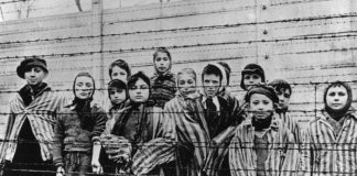 "Children of Holocaust Survivors Have Inherited Concentration Camp ""Brain Damage"" According to Study"